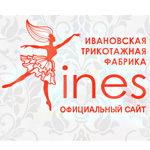 Логотип IN-ES
